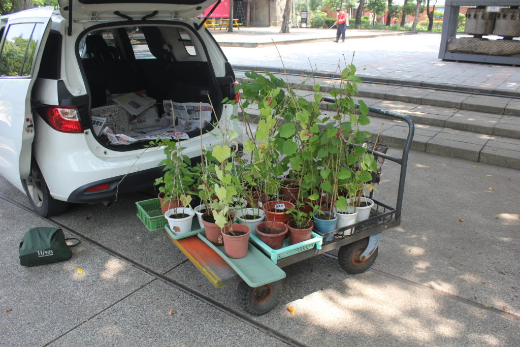 A Planter's Art, garden transport